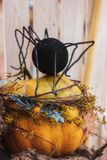 Украшения на Halloween Огромный паук сидит на тыкве стоковые фото