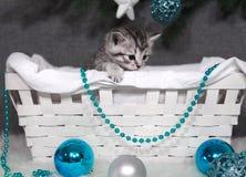 Украшения рождества и Нового Года голубых шариков и шариков Стоковое Изображение RF