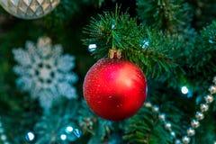 Украшения рождества на ветвях ели Стоковая Фотография