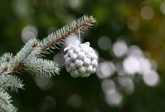 Украшения рождественской елки Стоковое фото RF