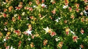 Украшения рождественской елки видеоматериал