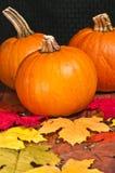 Украшения тыквы Oktoberfest осени Стоковое Изображение