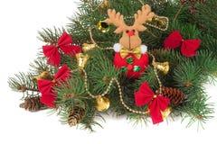 Украшенная ветвь ели рождества изолированная на белой предпосылке Стоковые Фото
