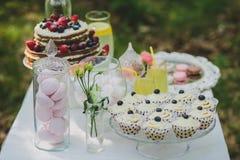 Украшенная сладостная таблица для пикника с помадками, чашки свадьбы лета Стоковые Изображения RF