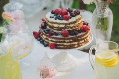 Украшенная сладостная таблица для пикника с помадками, чашки свадьбы лета Стоковое Фото
