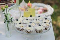 Украшенная сладостная таблица для пикника с помадками, чашки свадьбы лета Стоковое Изображение