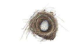 Украшенное пасхальное яйцо в гнезде Стоковое Изображение
