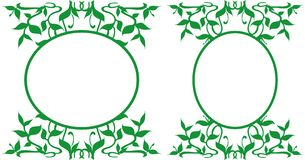 Украшенные овальные рамки, иллюстрация - флористическая тема Стоковое фото RF