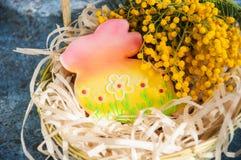 Украшенные печенья зайчика пасхи Стоковые Изображения