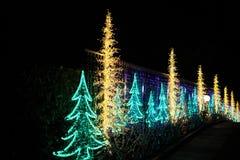 Украшенные света рождественской елки Стоковое Фото