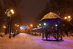 Украшенный парк города зимы Стоковое Изображение