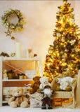 Украшенный угол интерьера рождества стоковые изображения rf