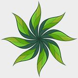 Украшенный цветок Стоковые Изображения