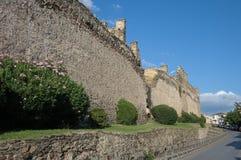 укрепленная стена городка thessaloniki Стоковые Фото