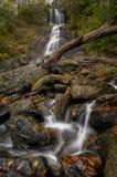 Укроп падает водопад Стоковые Изображения RF