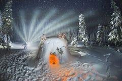 Укрытие Snowy в шторме Стоковое Изображение RF