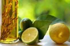 уксус лимонов Стоковое Фото