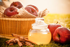 Уксус яблочного сидра стоковые фото