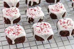 Укусы пирожного пипермента шоколада Стоковое Фото
