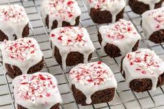 Укусы пирожного пипермента шоколада Стоковые Фото