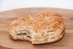 Укус на patella с хриплостями стоковое изображение rf