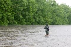 улавливает семг реки рыболова Стоковое Изображение