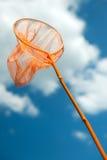 улавливать бабочек Стоковые Фотографии RF