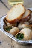 Улитки как еда лакомки с хлебом Стоковые Фото