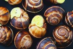 Улитки на темной плите Французское блюдо Стоковые Фотографии RF