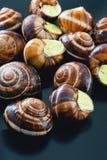 Улитки на темной плите Французское блюдо Стоковое Фото