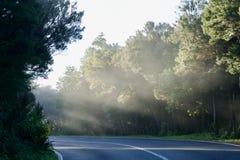 Улица в облаке Стоковая Фотография