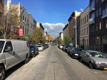 Улица в осени, Бруклин Харта, Нью-Йорк Стоковое Изображение RF