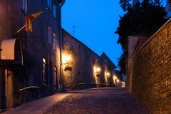 Улица в старом Tallinn к ноча стоковое фото rf
