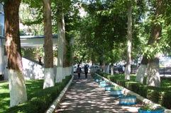 улица дня солнечная Стоковое Фото