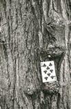 улица играть карточек Стоковое фото RF