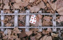 улица играть карточек Стоковые Изображения RF