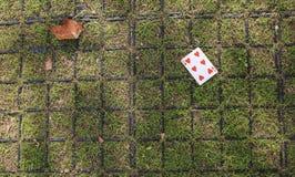 улица играть карточек Стоковые Фото