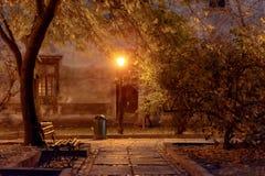 Улица ночи ландшафта осени в дожде и накаляя фонарике Стоковое Изображение