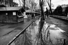 Улица после дождя в Chisinau столица республики Молдавии Архитектура и здания, бульвар Стефана большой Стоковые Изображения RF