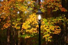 улица светильника осени стоковое фото rf