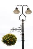 улица светильника цветка Стоковое Фото