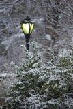 улица шторма снежка светильника Стоковая Фотография RF