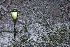 улица шторма снежка светильника Стоковые Изображения