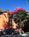 улица allende de guanajuato Мексики miguel san Стоковое фото RF