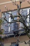 улица san lombard francisco следующая к Стоковые Изображения