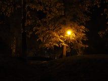 Уличный фонарь на сумраке Стоковое Изображение RF