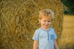Улыбка на связке сена, лето мальчика стоковые фотографии rf