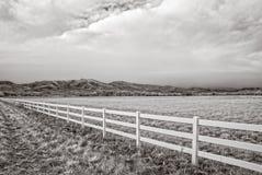 Ультракрасное изображение поля зимы вне Больдэра, Колорадо стоковые фото