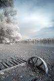 ультракрасный берег реки Стоковое Изображение