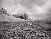 ультракрасный ландшафт Стоковые Фотографии RF